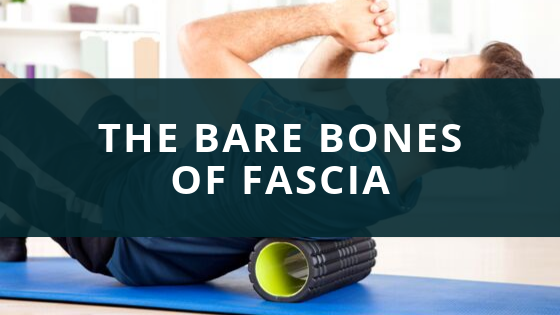 The bare bones of fascia